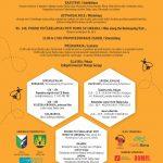 Razvojna agencija Sora / plakat za Medeno hrbet