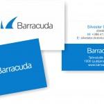 predlog vizitke Barradria